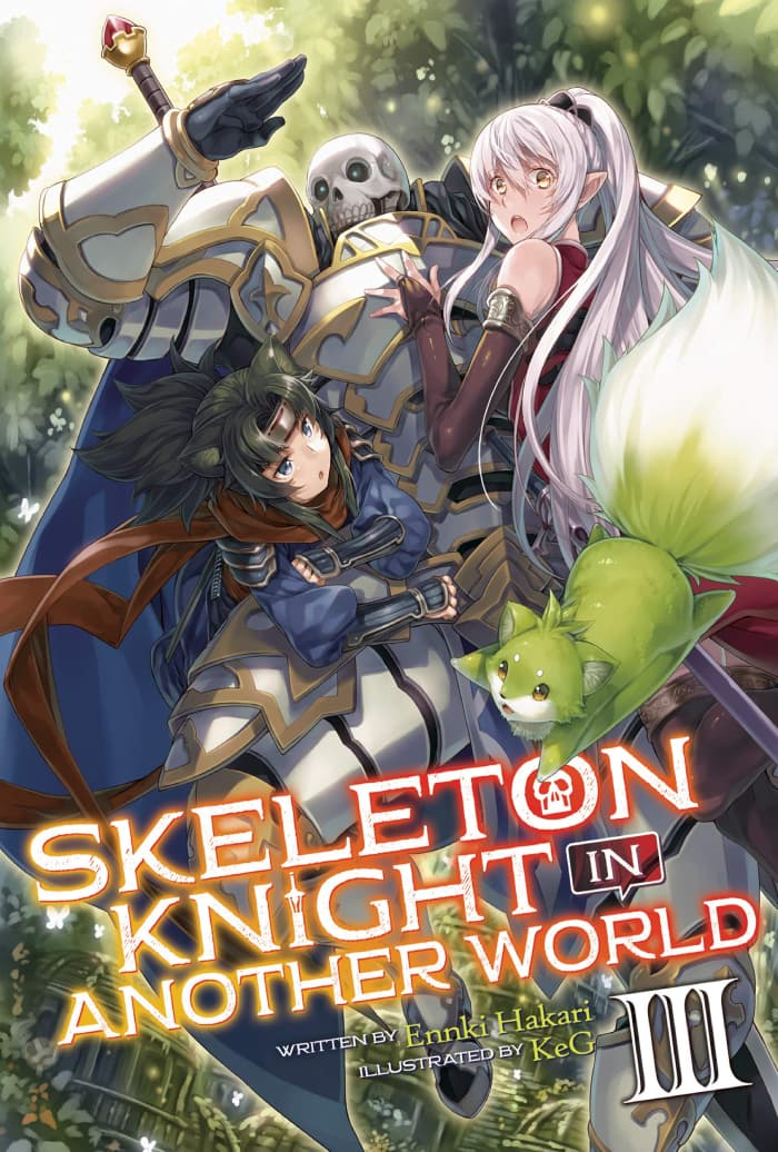 Skeleton Knight, in Another World